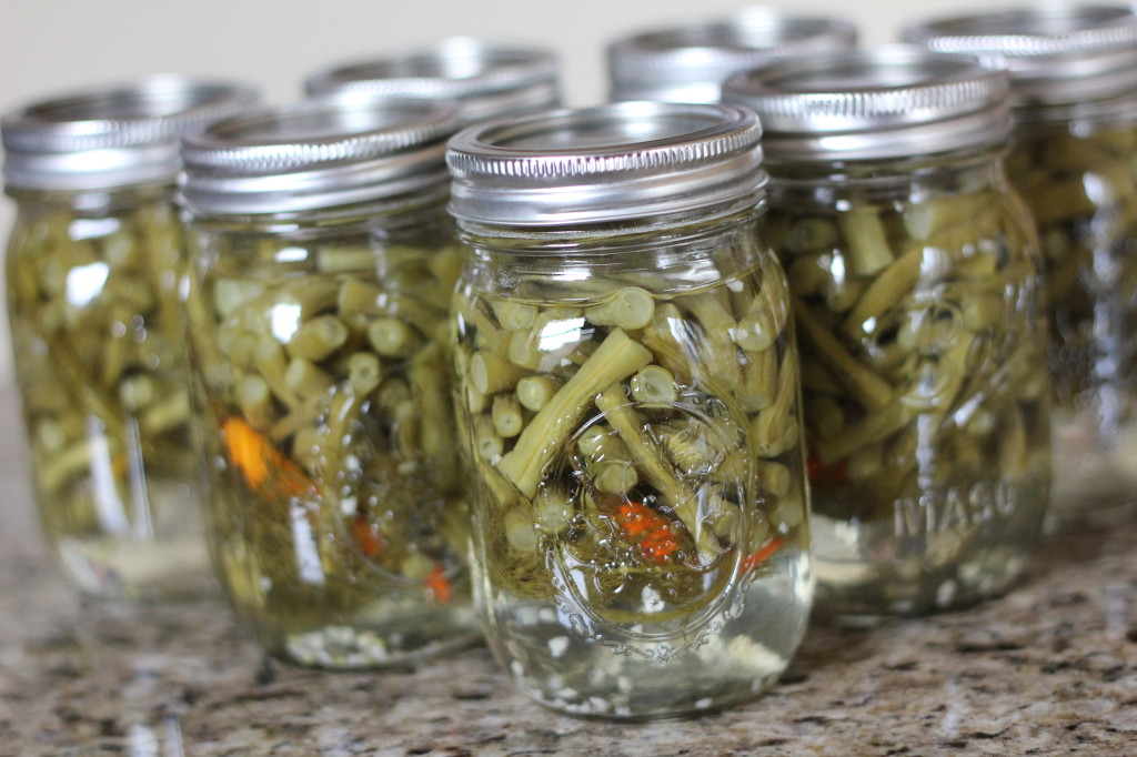 Canned Pickled Green Beans