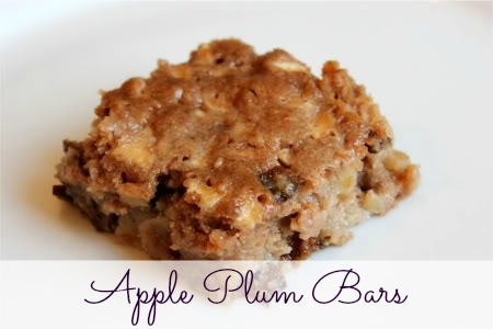 apple plum bars