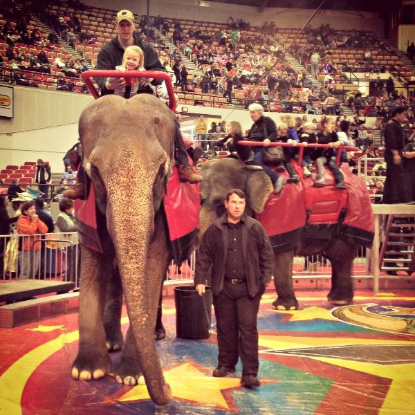 elephant_ride_blog