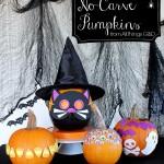 no-carve-pumpkins