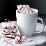 Stir a square of this Peppermint Chocolate Hot Cocoa Candy Mix-In into a cup of hot cocoa and turn it into the best (and easiest) peppermint hot cocoa you've ever tasted - also perfect for gift giving! | All Things G&D #essentialoils #hotcocoa #hotchocolate #handmadegift #homemadegift