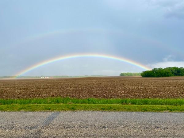 Rylees-rainbows-4